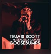 Travis Scott Ft  Kendrick Lamar - Goosebumps (Instrumental